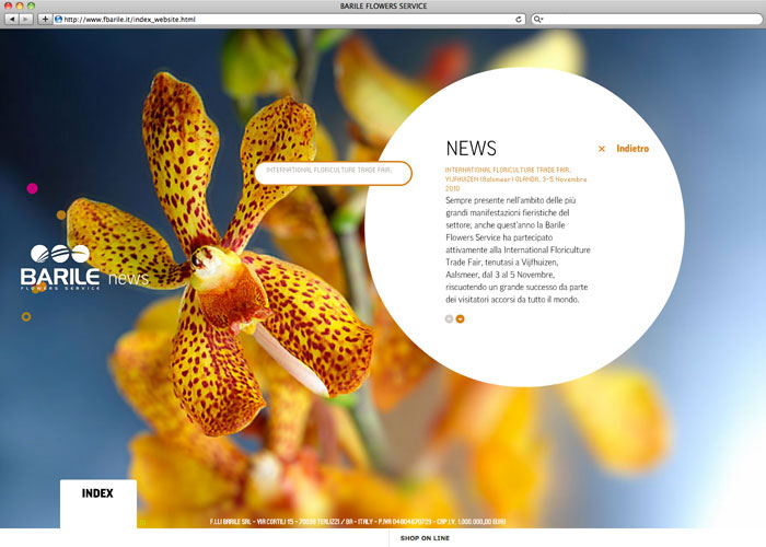 barile_web_2010_mariomatera_02