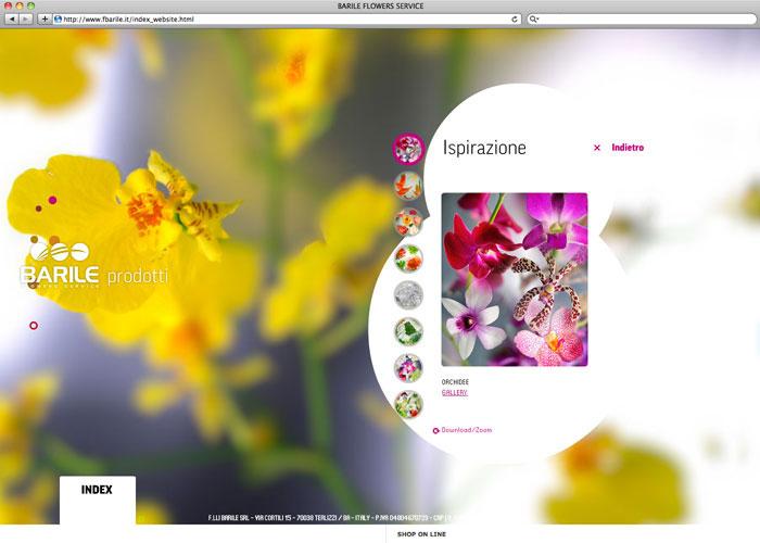 barile_web_2010_mariomatera_04